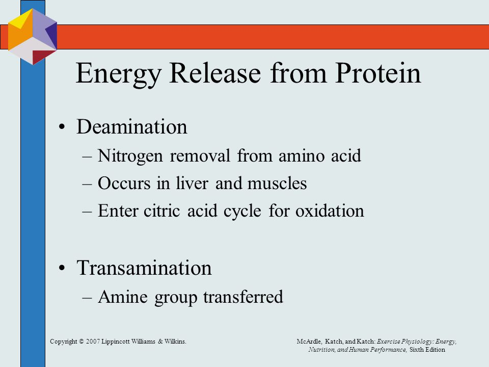 Copyright © 2007 Lippincott Williams & Wilkins.McArdle, Katch, and Katch: Exercise Physiology: Energy, Nutrition, and Human Performance, Sixth Edition