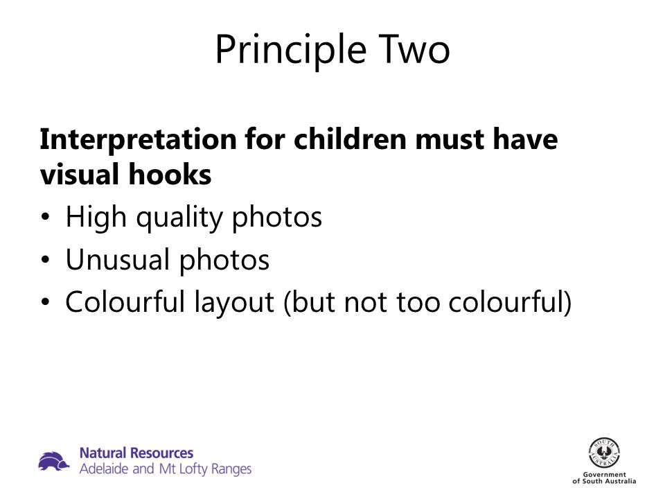 Principle Two Interpretation for children must have visual hooks High quality photos Unusual photos Colourful layout (but not too colourful)