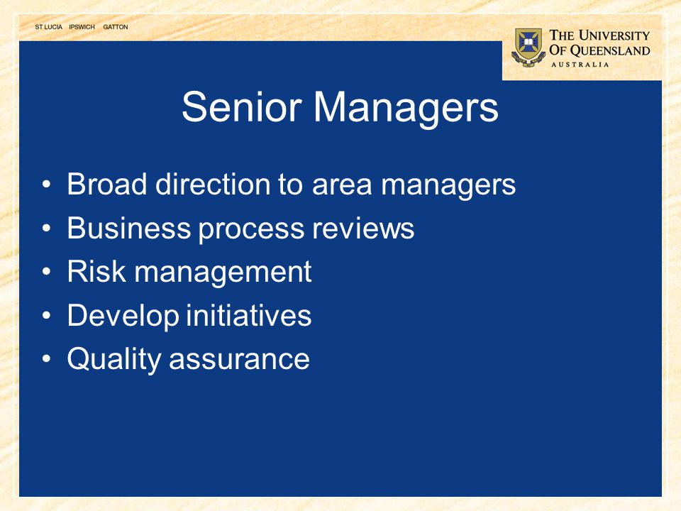 5 Senior Managers Broad direction to area managers Business process reviews Risk management Develop initiatives Quality assurance