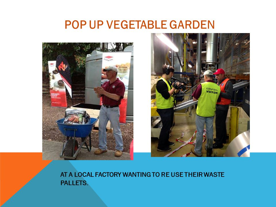 AT A LOCAL FACTORY WANTING TO RE USE THEIR WASTE PALLETS. POP UP VEGETABLE GARDEN