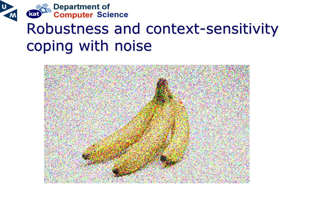 Robustness and context-sensitivity coping with noise