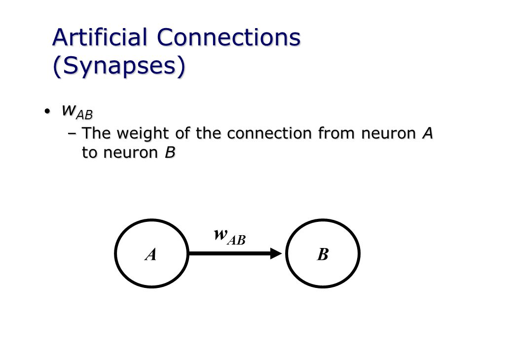 Artificial Connections (Synapses) w AB w AB –The weight of the connection from neuron A to neuron B AB w AB