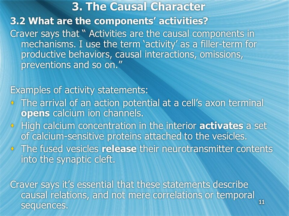 11 3. The Causal Character 3.2 What are the components' activities.