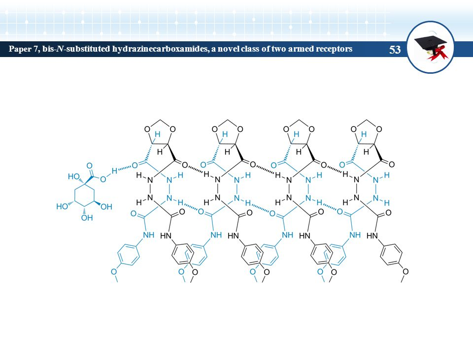 Paper 7, bis-N-substituted hydrazinecarboxamides, a novel class of two armed receptors 53