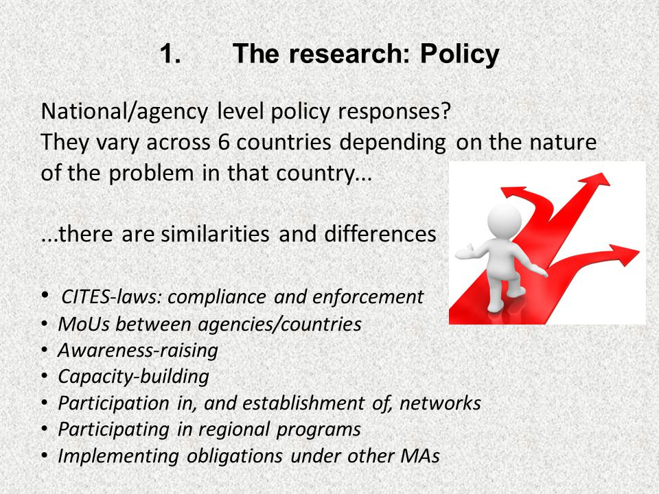 Identifying an 'optimal' policy response would give a basis for evaluation...