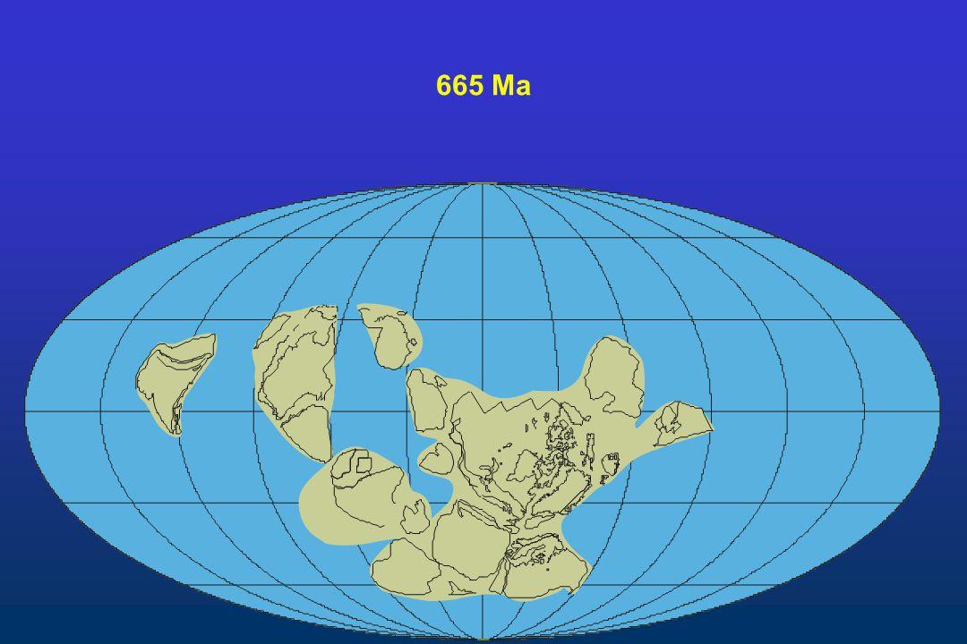 665 Ma