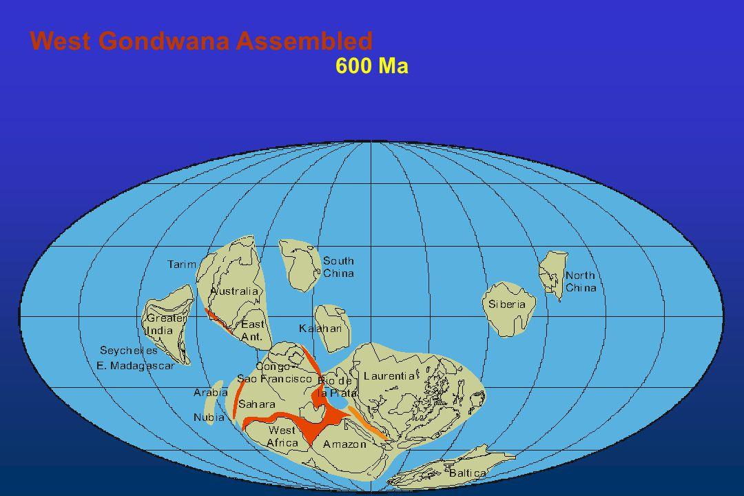 600 Ma West Gondwana Assembled