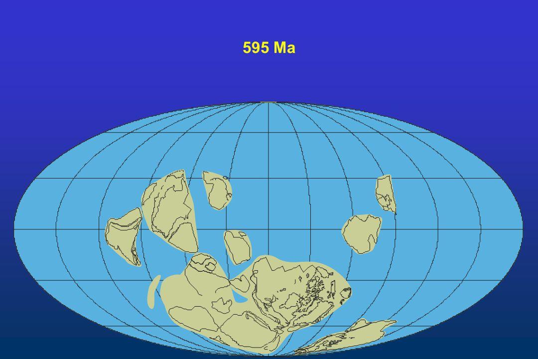 595 Ma