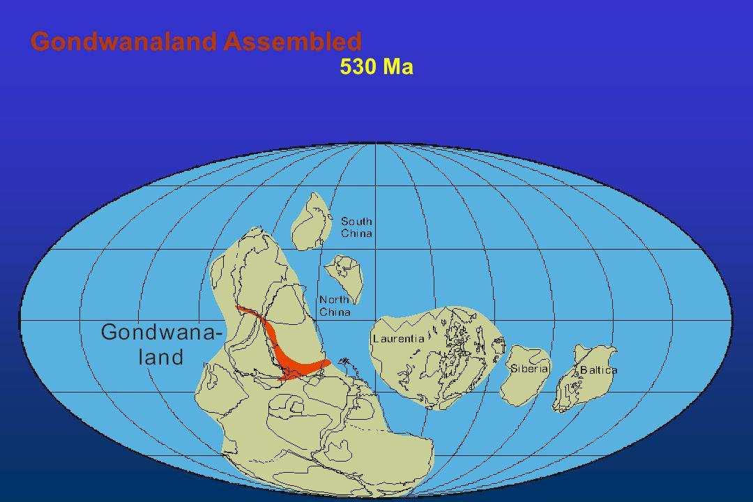 530 Ma Gondwanaland Assembled