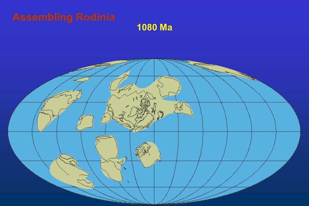1080 Ma AssemblingAssembling Rodinia