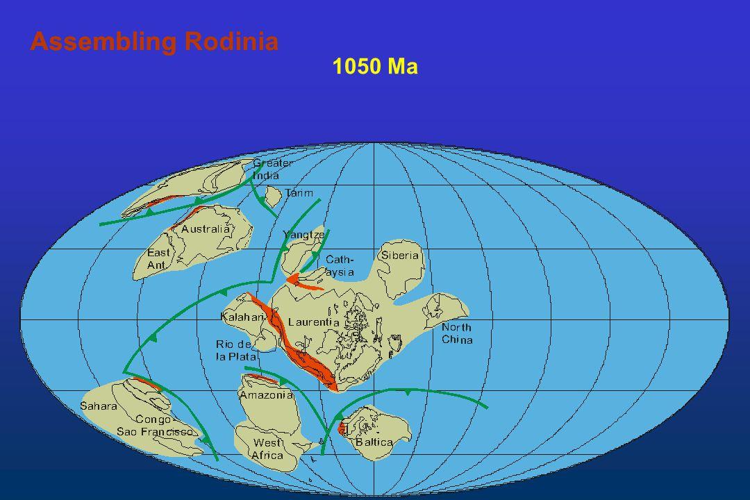 1050 Ma AssemblingAssembling Rodinia