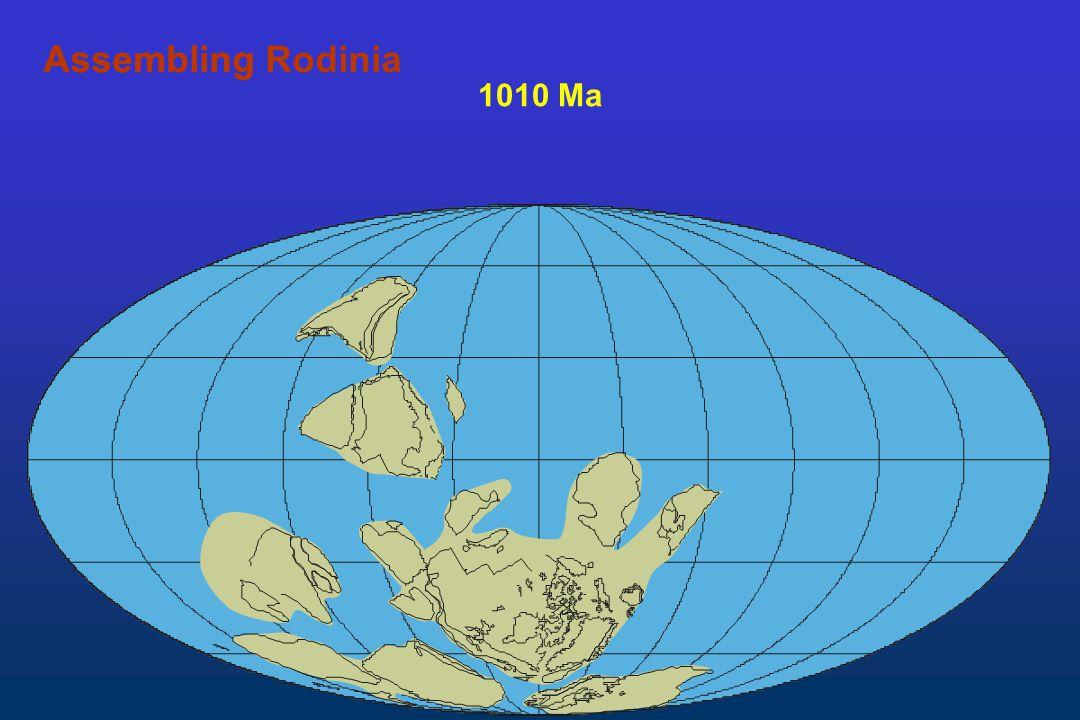 1010 Ma AssemblingAssembling Rodinia