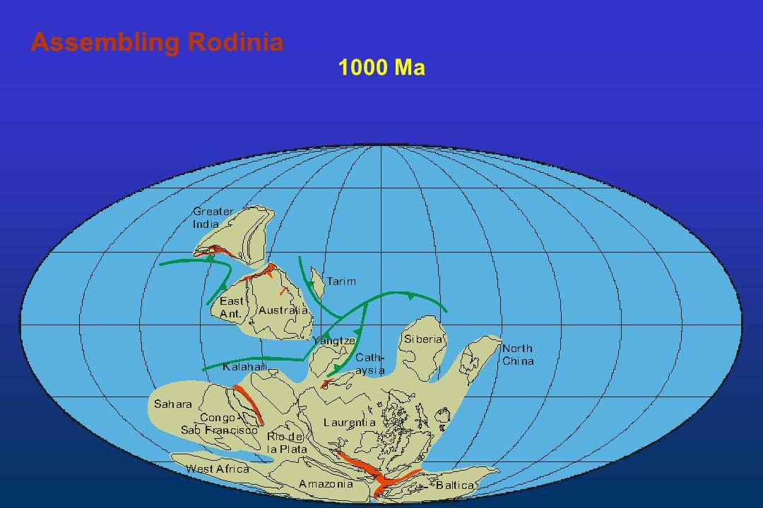 1000 Ma AssemblingAssembling Rodinia