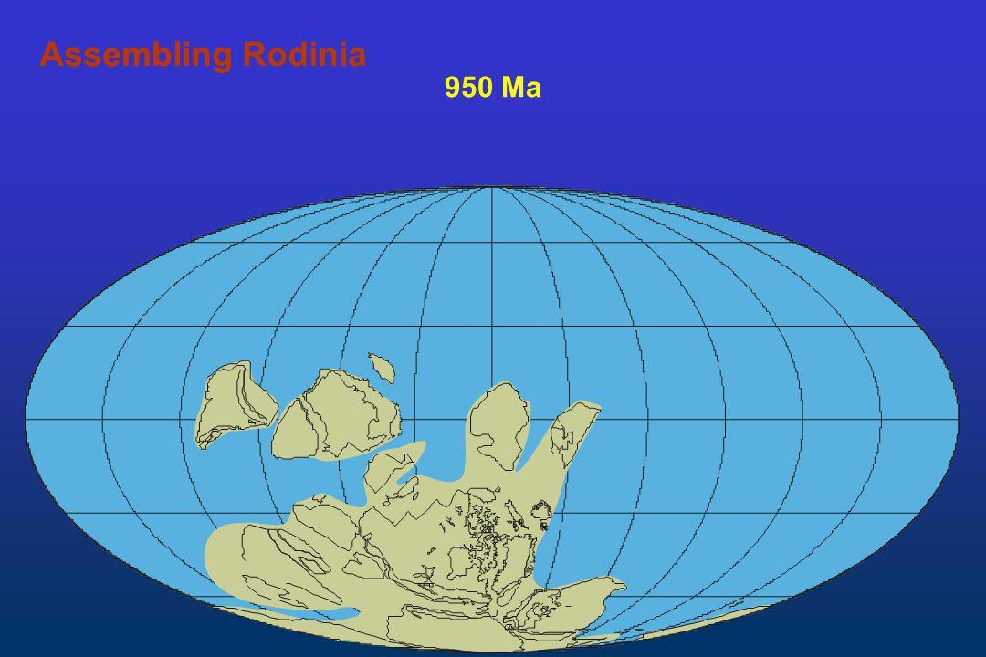 950 Ma AssemblingAssembling Rodinia