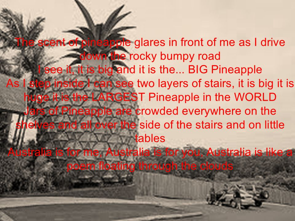 The scent of pineapple glares in front of me as I drive down the rocky bumpy road I see it, it is big and it is the... BIG Pineapple As I step inside