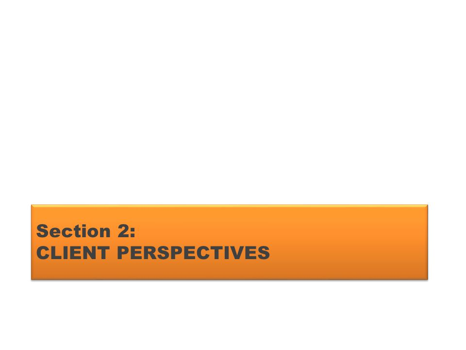 Section 2: CLIENT PERSPECTIVES