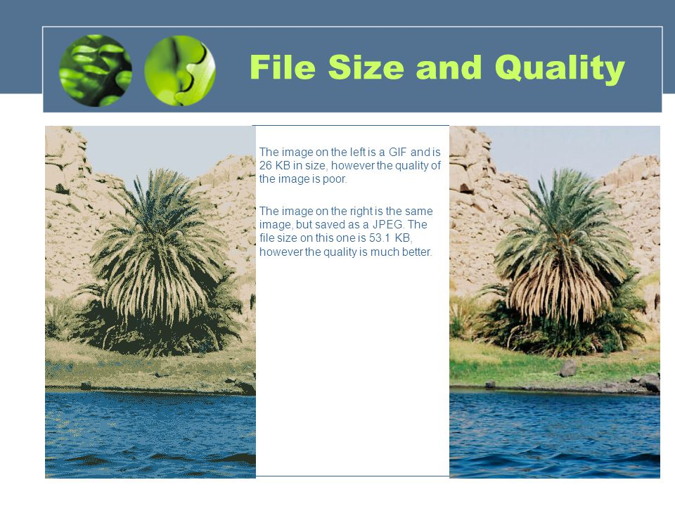 File Size and Quality The image on the left is a GIF and is 26 KB in size, however the quality of the image is poor.