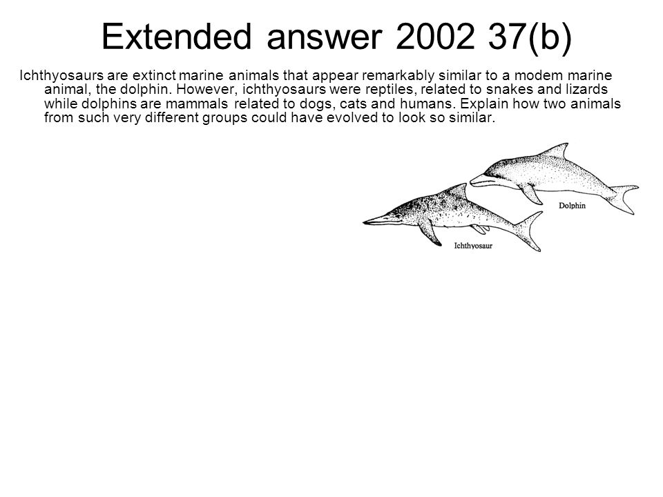 Extended answer 2002 37(b) Ichthyosaurs are extinct marine animals that appear remarkably similar to a modem marine animal, the dolphin. However, icht