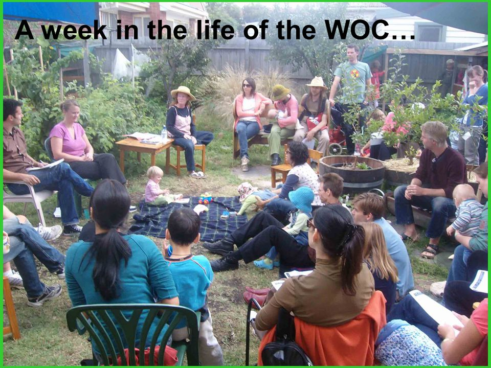 A week in the life of the WOC…