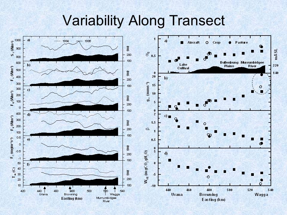 Variability Along Transect