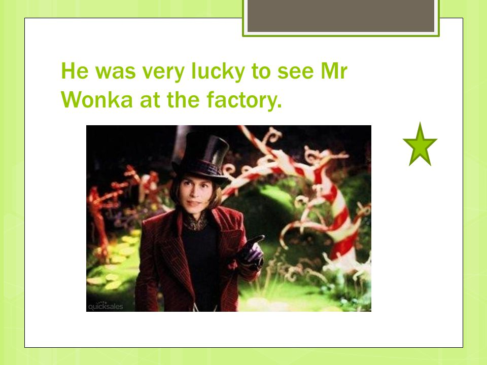 He was very lucky to see Mr Wonka at the factory.