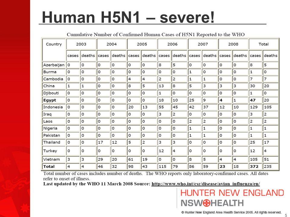 5 Human H5N1 – severe!