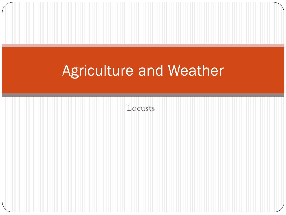 Locusts Agriculture and Weather