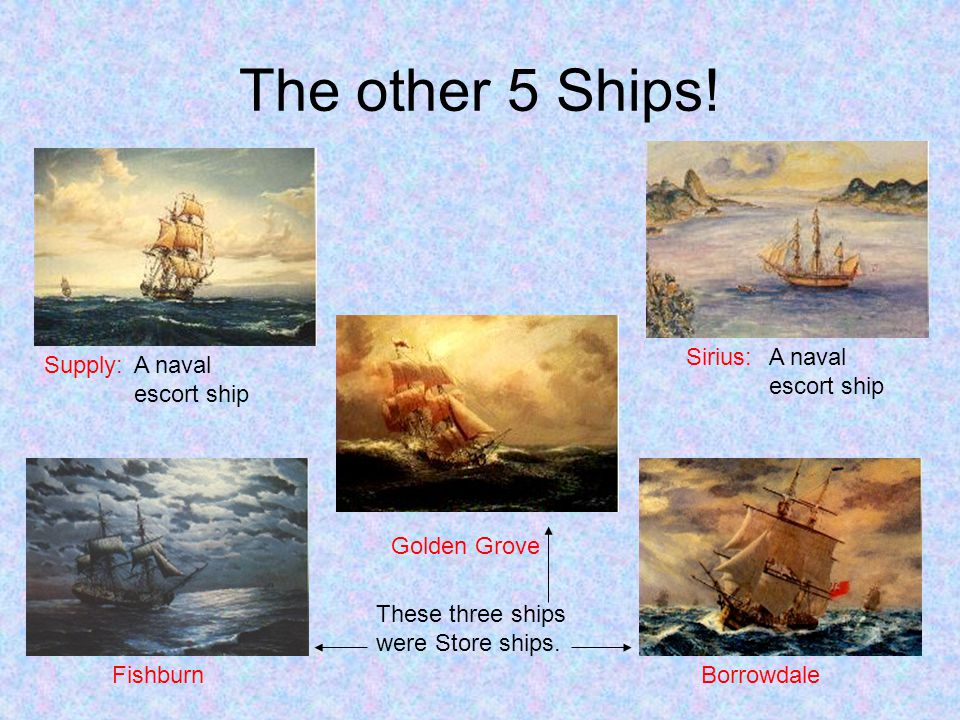 The other 5 Ships! Fishburn Golden Grove Borrowdale Supply: Sirius: A naval escort ship A naval escort ship These three ships were Store ships.