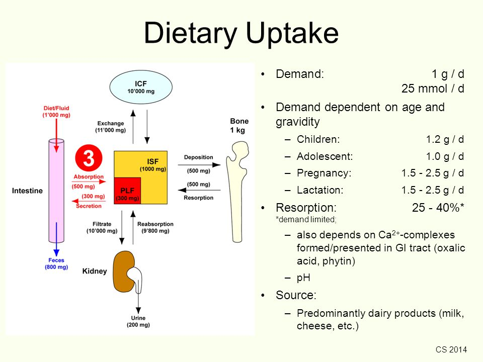 CS 2014 Dietary Uptake Demand: 1 g / d 25 mmol / d Demand dependent on age and gravidity –Children: 1.2 g / d –Adolescent: 1.0 g / d –Pregnancy:1.5 -