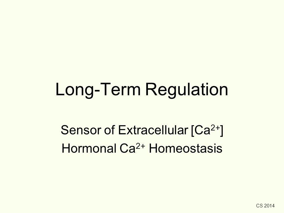CS 2014 Long-Term Regulation Sensor of Extracellular [Ca 2+ ] Hormonal Ca 2+ Homeostasis