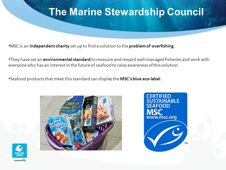 The Marine Stewardship Council MSC is an independent charity set up to find a solution to the problem of overfishing. They have set an environmental s