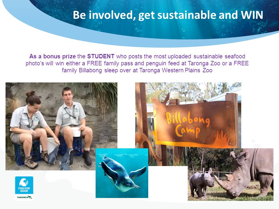 Be involved, get sustainable and WIN As a bonus prize the STUDENT who posts the most uploaded sustainable seafood photo's will win either a FREE famil