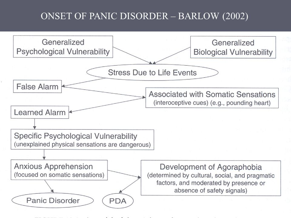 ONSET OF PANIC DISORDER – BARLOW (2002)
