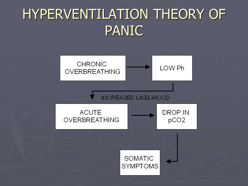 HYPERVENTILATION THEORY OF PANIC