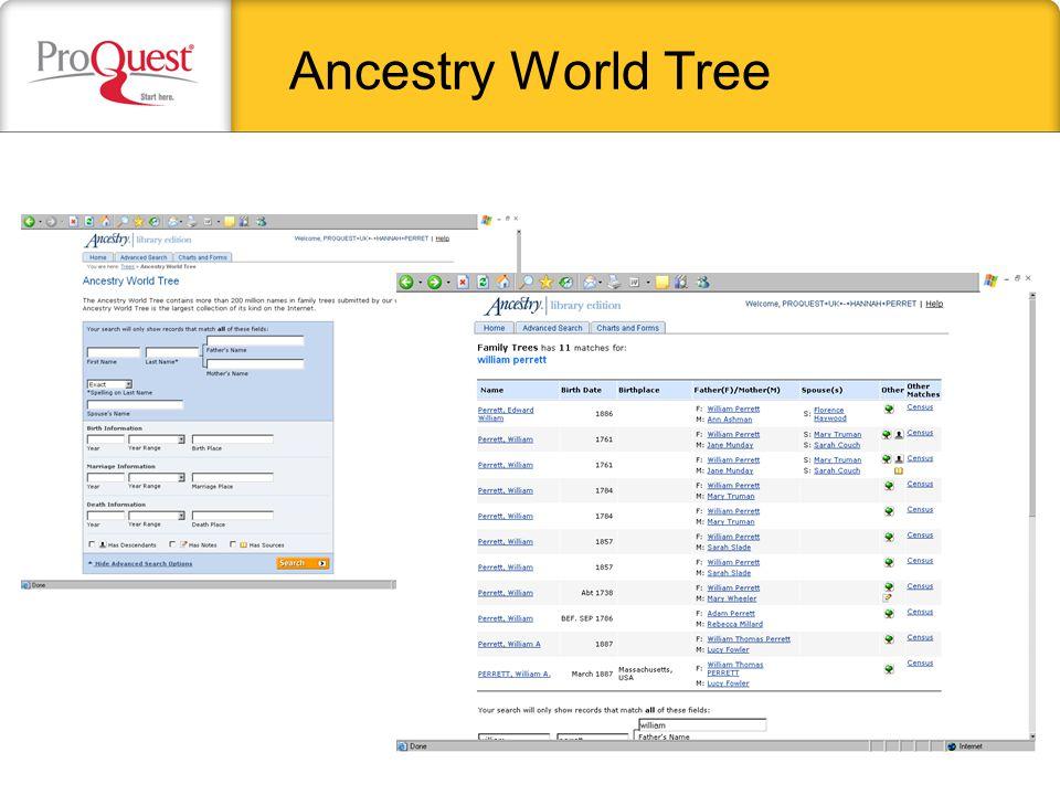 Ancestry World Tree