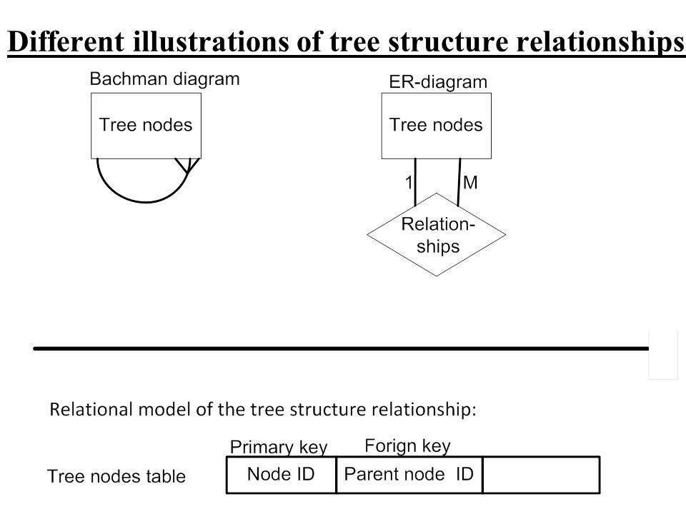 Different illustrations of tree structure relationships: