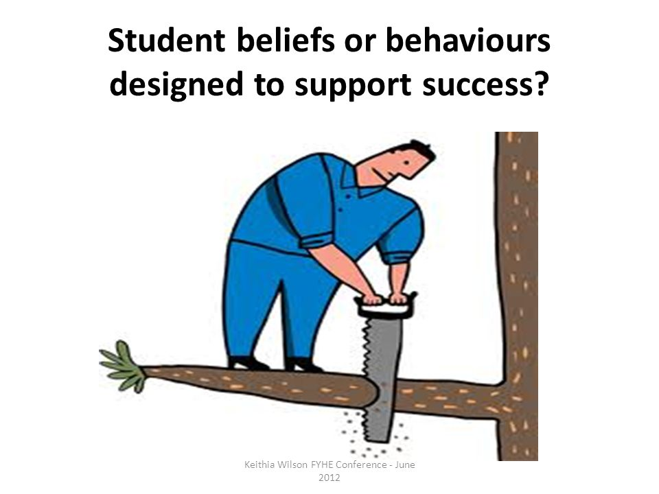 Student beliefs or behaviours designed to support success.
