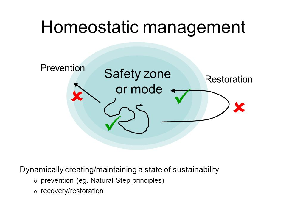 Homeostatic management Safety zone or mode  Restoration Prevention  Dynamically creating/maintaining a state of sustainability o prevention (eg.