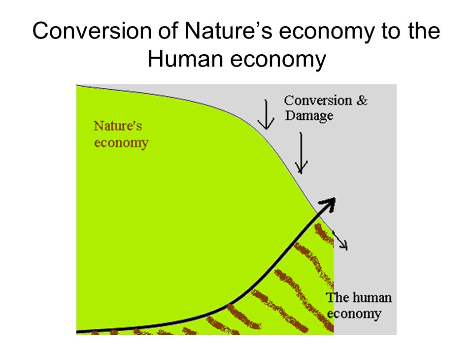 Conversion of Nature's economy to the Human economy