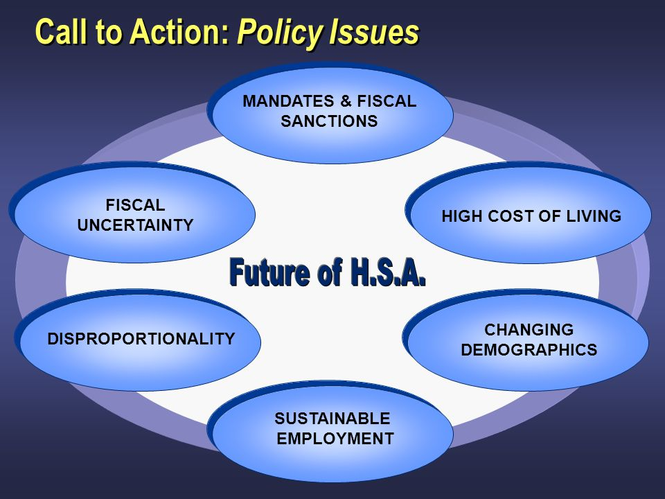 Call to Action: Policy Issues CHANGING DEMOGRAPHICS HIGH COST OF LIVING SUSTAINABLE EMPLOYMENT FISCAL UNCERTAINTY DISPROPORTIONALITY MANDATES & FISCAL