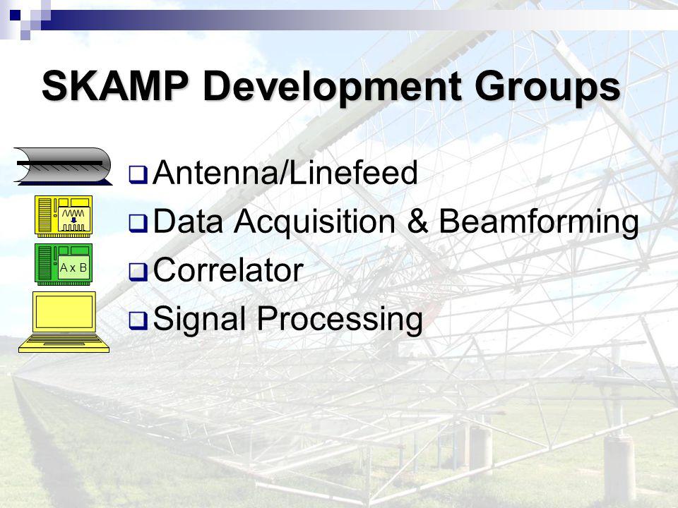 SKAMP Development Groups  Antenna/Linefeed  Data Acquisition & Beamforming  Correlator  Signal Processing A x B