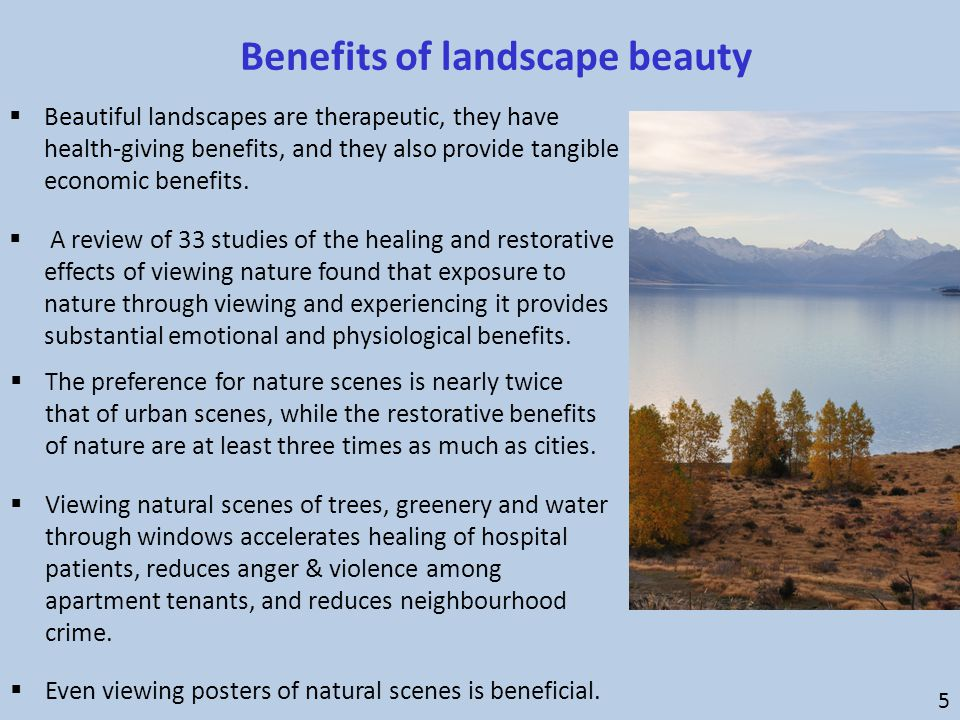  Beautiful landscapes are therapeutic, they have health-giving benefits, and they also provide tangible economic benefits.  A review of 33 studies o