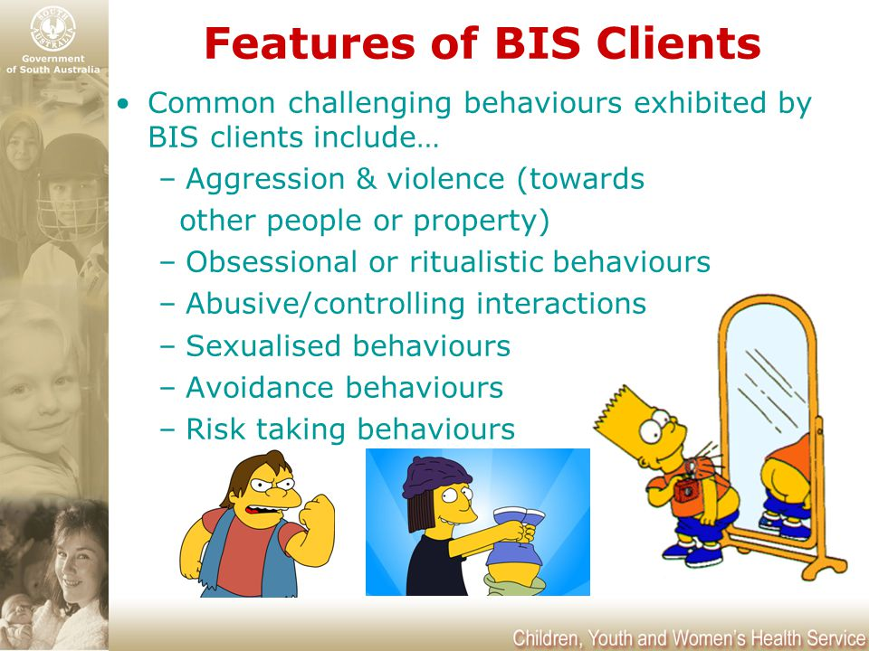 Features of BIS Clients Common challenging behaviours exhibited by BIS clients include… –Aggression & violence (towards other people or property) –Obs