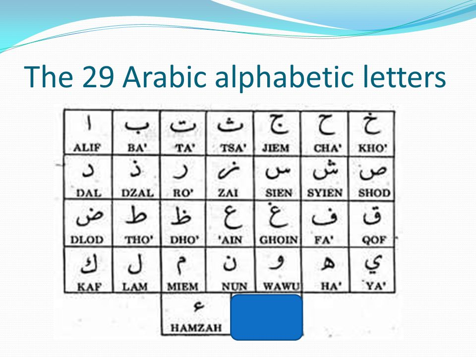 The 29 Arabic alphabetic letters