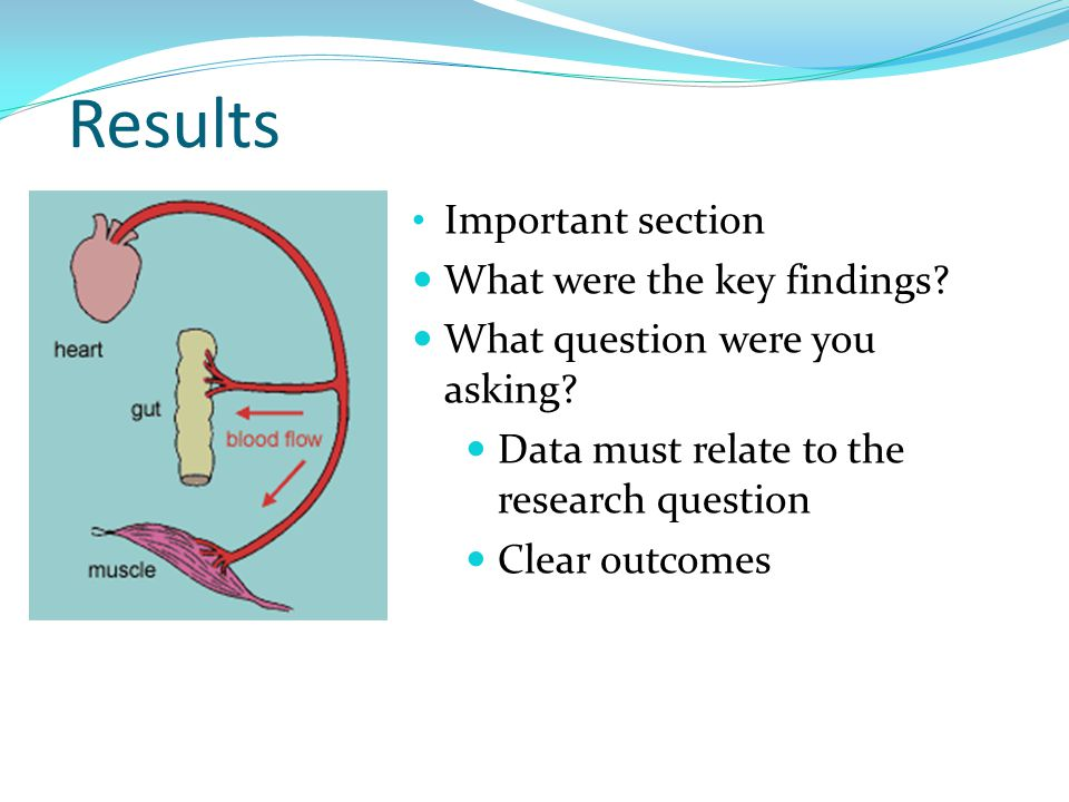 Results Important section What were the key findings.