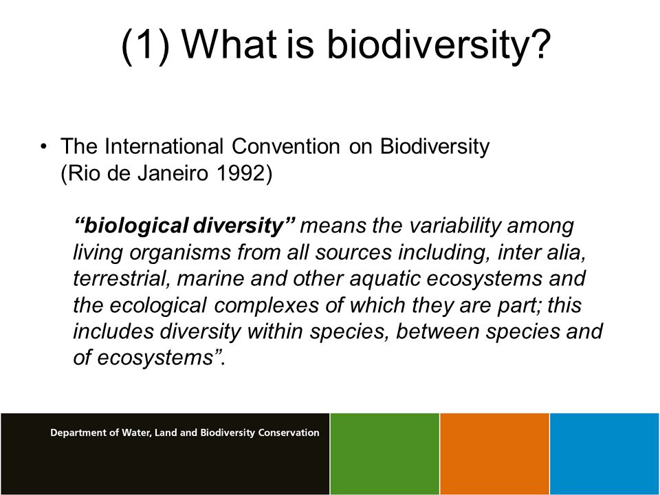 (1) What is biodiversity.