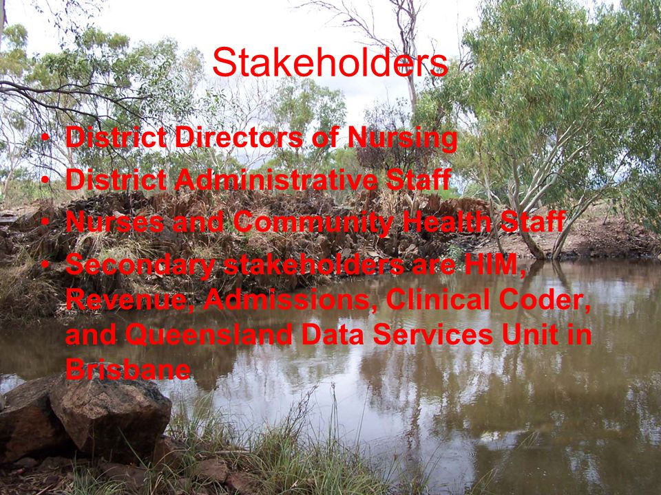 Stakeholders District Directors of Nursing District Administrative Staff Nurses and Community Health Staff Secondary stakeholders are HIM, Revenue, Admissions, Clinical Coder, and Queensland Data Services Unit in Brisbane