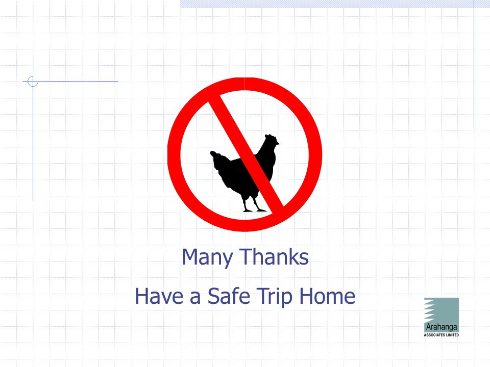 Many Thanks Have a Safe Trip Home