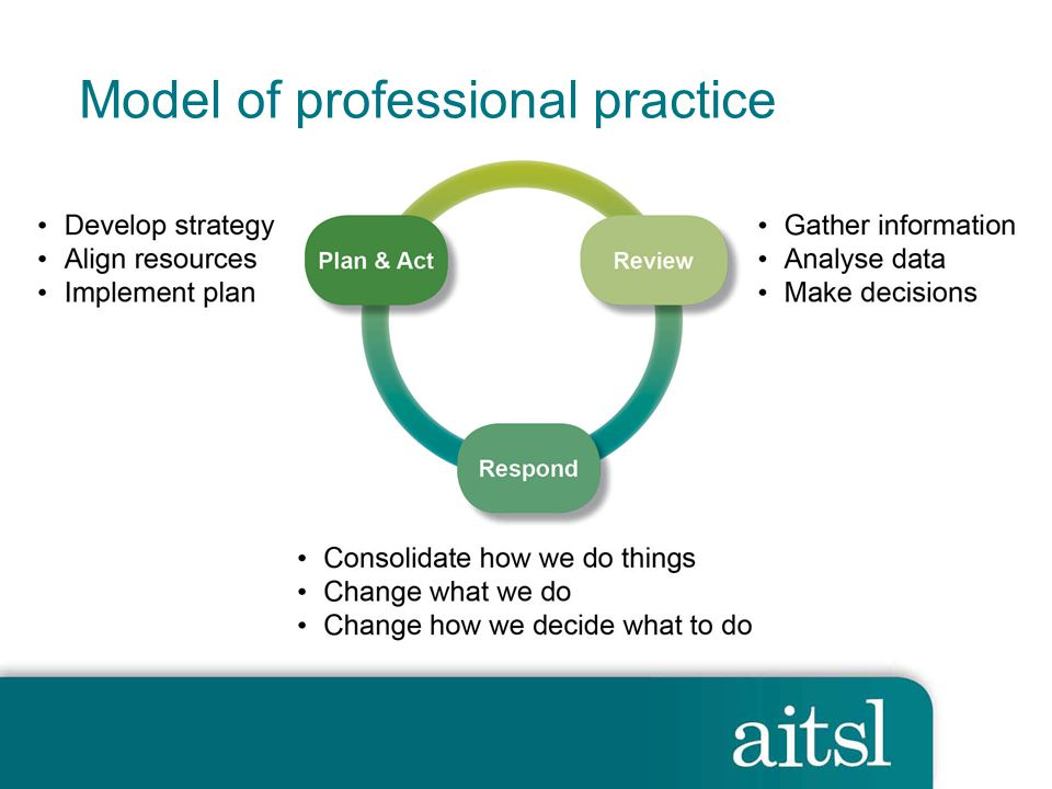 Model of professional practice 9