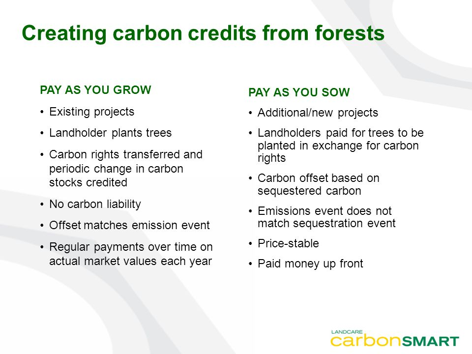PAY AS YOU GROW Existing projects Landholder plants trees Carbon rights transferred and periodic change in carbon stocks credited No carbon liability Offset matches emission event Regular payments over time on actual market values each year Creating carbon credits from forests PAY AS YOU SOW Additional/new projects Landholders paid for trees to be planted in exchange for carbon rights Carbon offset based on sequestered carbon Emissions event does not match sequestration event Price-stable Paid money up front
